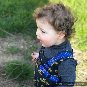 Chief Explorer | Blue Star ONK Baby Reins ! @abi2910